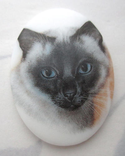 porcelain print cat flat back cabochon 40x30mm - f5949