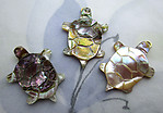 abalone shell carved turtle charm 23x17mm - s248
